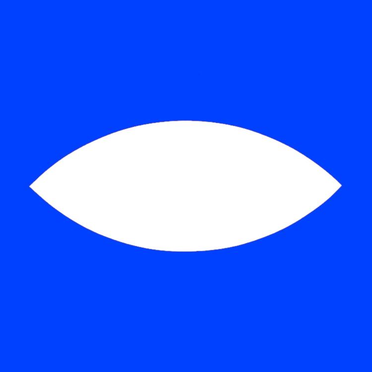 Flying Saucer #1